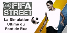 Voir les articles sur FIFA Street